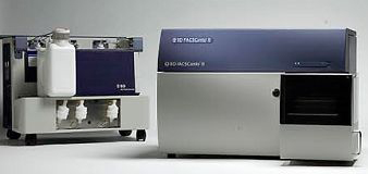 FACSCanto II